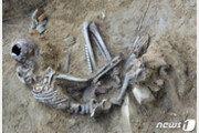 철원 DMZ 화살머리고지서 5월 한달간 유해 98점 발굴