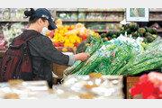 5월 소비자물가 ―0.3%… 8개월만에 마이너스로