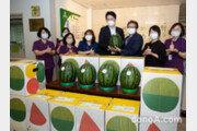 조원태 한진그룹 회장, 소외계층 위해 함안수박 500통 개인 기부