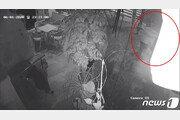 여성 어깨 덥석…CCTV에 잡힌 부장검사 성추행