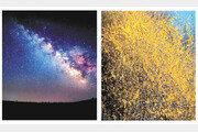 국민대학교, 화려한 영상 예술로 아름다운 야경 이뤄내