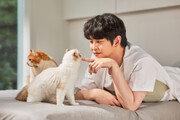 후시펫X보령컨슈머헬스케어, HOOXI PET 고양이 영양제 8월 출시