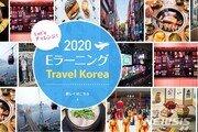 """""""한국여행 어디까지 가봤니?""""…관광공사, 日서 테스트"""