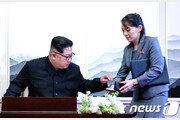 이어지는 '대북 소송전'…제2의 '삐라 갈등' 재발되나