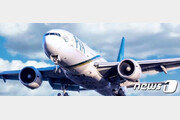 파키스탄항공 조종사 '면허 스캔들' 일파만파…미국도 '운항 금지'