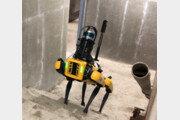네 발로 걷는 로봇, 건설현장서 일한다