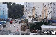 [속보]확진자 1명 나온 부산 감천항 선박, 나머지 43명 전원 '음성'