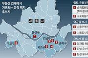 국공립 부지 활용해도 서울 공급난 해소엔 역부족