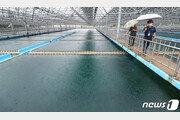 인천 수돗물서 유충 추정 물질 12건 또 발견…총 266건으로 늘어