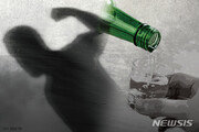 """만취한 40대, """"텃밭 밟지 말라""""는 60대 女 '묻지마' 폭행 구속"""