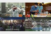 채널에이 '행복한 아침',  청운대 '골목 대장 프로젝트 상생 현장' 6일 방송