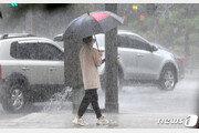 """42일째 장마 장기화 속 폭우·폭염 양극화…""""지구온난화 영향"""""""