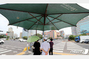 '최장 장마 뒤 연일 불볕' 예측불가 제주 날씨…폭염도 역대 최장?