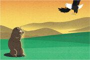 '독수리 vs 마멋' 누가 이길까[서광원의 자연과 삶]〈24〉