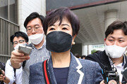 """""""유죄땐 전재산 기부"""" 손혜원… 법원 '보안자료 이용 투기' 실형"""