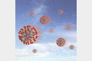 국내 첫 재감염 의심사례 촉각…1, 2차 감염 유전자형 서로 달라