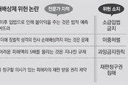 """법조계 """"집단소송제 소급적용 - 징벌적 손배 위헌소지"""""""