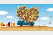 낙엽과 깻단, 그리고 월동준비[포도나무 아래서/신이현]〈66〉