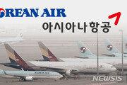 정부, 대한항공의 아시아나 인수 공식화…'한진칼 경영권 분쟁' 무의미해 지나