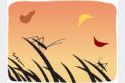 구슬픈 '가을 소리'의 정체[서광원의 자연과 삶]〈29〉