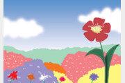 나 하나 꽃 피어[나민애의 시가 깃든 삶]〈274〉