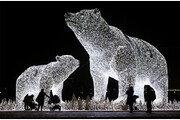 커다랗게 빛나는 곰… 러시아 성탄 조형물