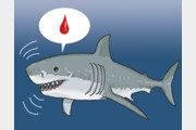 상어와 악어의 장수 비결[서광원의 자연과 삶]〈31〉