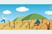 포도밭에 나타난 대지의 여신[포도나무 아래서/신이현]〈70〉