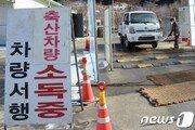 철원 야생조류 폐사체 34마리서 고병원성 AI 무더기 감염 확인