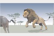 사자와 호랑이의 사냥 성공률[서광원의 자연과 삶]〈33〉