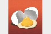 달걀 떨어뜨리기 대회[왕은철의 스토리와 치유]〈180〉