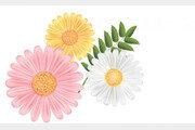 [카티아조의 패션 키워드]올봄 원피스엔 꽃이 활짝…