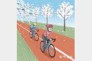 벚꽃 라이딩, 안전하게 즐깁시다[카버의 한국 블로그]
