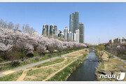 대한민국 서울, 미국인이 꼽은 올해 가고 싶은 여행지