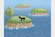 실태 파악 시급한 세계 4위 섬 보유국[김창일의 갯마을 탐구]〈58〉