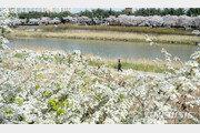 [날씨]4월 첫날도 포근한 날씨…서울 낮 최고기온 24도