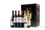 아영FBC, 와인 입문자 위한 '디아블로 스타터 패키지' 출시… CU 편의점 통해 예약 판매