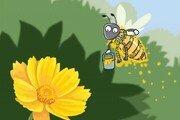 아름다운 꽃에 반드시 필요한 곤충[서광원의 자연과 삶]〈35〉