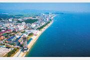 행복 충전 도시… 내년 보령머드박람회 개최