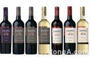 아영FBC, 프랑스 담은 칠레 와인 '마푸 시리즈' 8종 국내 출시