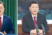 """시진핑이 美 비판한 포럼서… 文대통령 """"亞 신기술 협력 강화"""""""