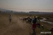 멕시코,국토 85%가 가뭄극심…호수 ·저수지도 말라붙어