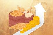 """국제 밀 가격 2014년 이후 최고 수준… 미국소맥협회 """"당분간 가격 상승세 불가피"""""""