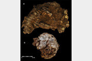 베개 벤 3세 아이… 아프리카 最古 무덤