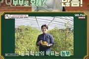 박선주, 강레오와 별거·이혼설 해명…결혼관 고백