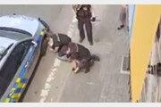 체코판 조지 플로이드 사건에…경찰, 5일 만에 '반쪽' 사과