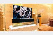 "[Tech&]""보석처럼 혹은 예술 작품처럼"" 스스로 빛나는 LG 올레드 TV"
