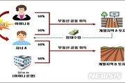 '엄마 찬스' 20대, 신도시 땅 수십억 투기…국세청 적발