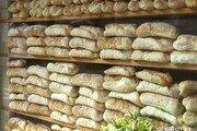 [고양이 눈]거대 '빵'벽