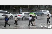 주말에도 '체감 33도↑' 찜통더위 계속…태풍 영향 일부지역 폭우